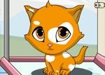 Fashion Games : Cute Kitten Fashion